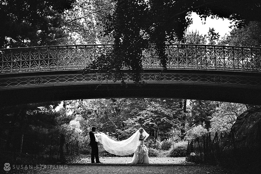 Wedding Pictures in Central Park
