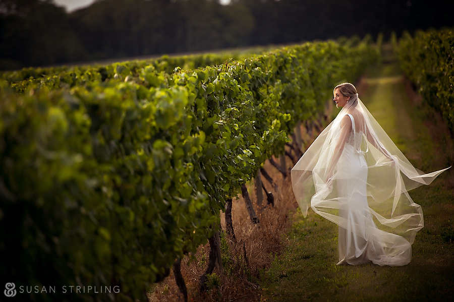 Wedding at Bedell Cellars