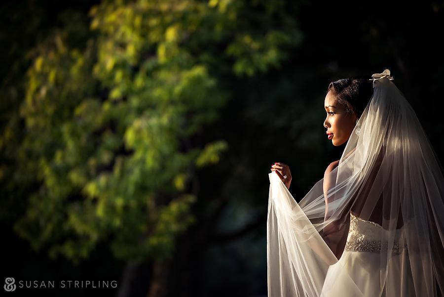 Bridal portrait at sunset