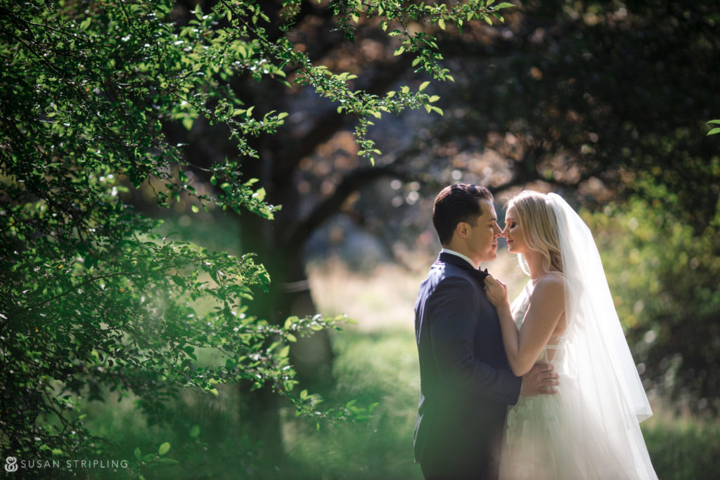 new york botanical gardens wedding best spots for photos